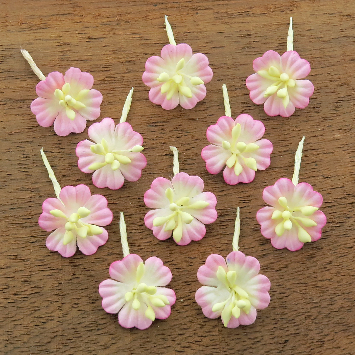 2-TONE BABY PINK/IVORY COTTON STEM MULBERRY PAPER FLOWERS - SET F