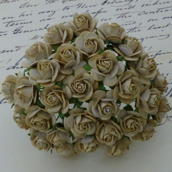 100 LIGHT MOCHA MULBERRY PAPER OPEN ROSES