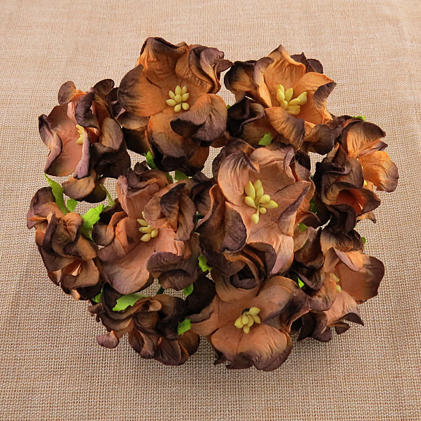 25 2-TONE CHOCOLATE BROWN GARDENIA FLOWERS