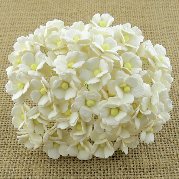 100 IVORY SWEETHEART BLOSSOM