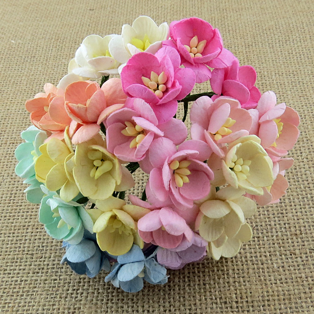 50 mixed pastel color mulberry paper cherry blossom stem flowers 50 mixed pastel color mulberry paper cherry blossom stem flowers mightylinksfo