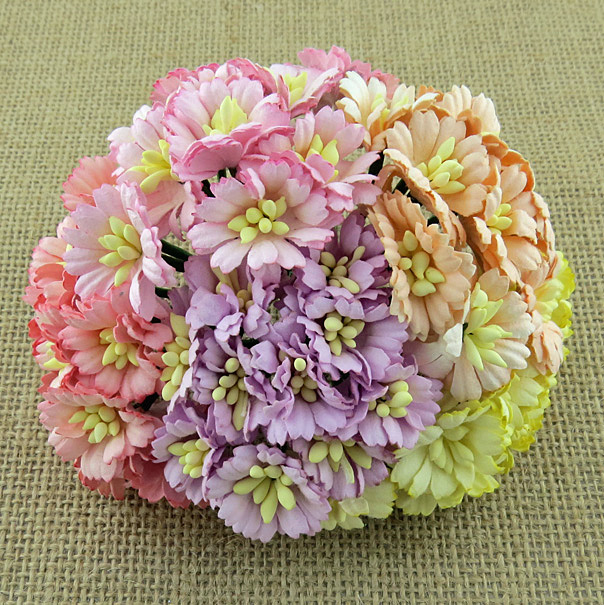 50 MIXED PASTEL TONE COSMOS DAISY STEM FLOWERS - SET B