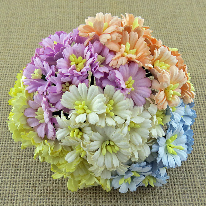 50 MIXED PASTEL TONE COSMOS DAISY STEM FLOWERS - SET A