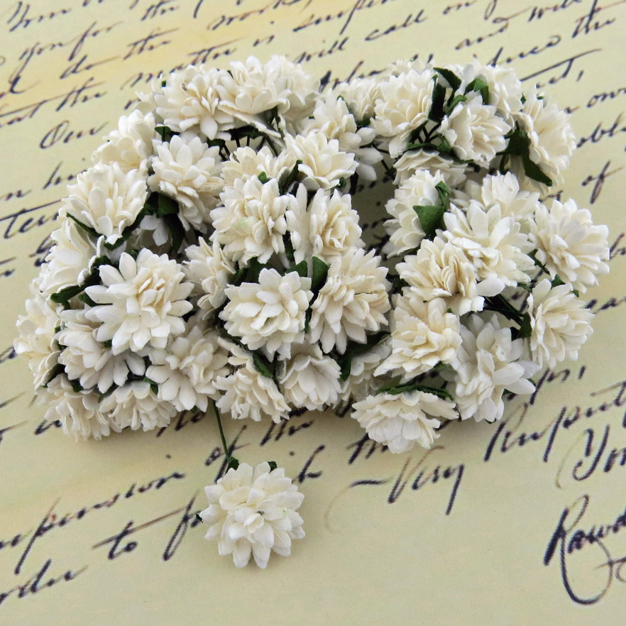 50 WHITE MULBERRY PAPER ASTER DAISY STEM FLOWERS