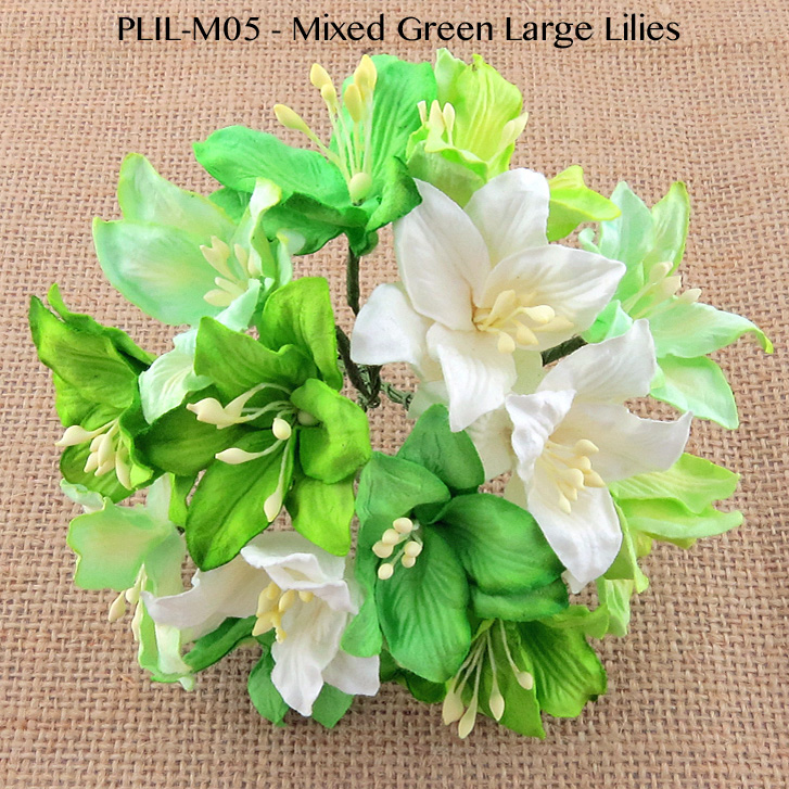 50 MIXED GREEN AND WHITE MULBERRY PAPER LILY FLOWERS