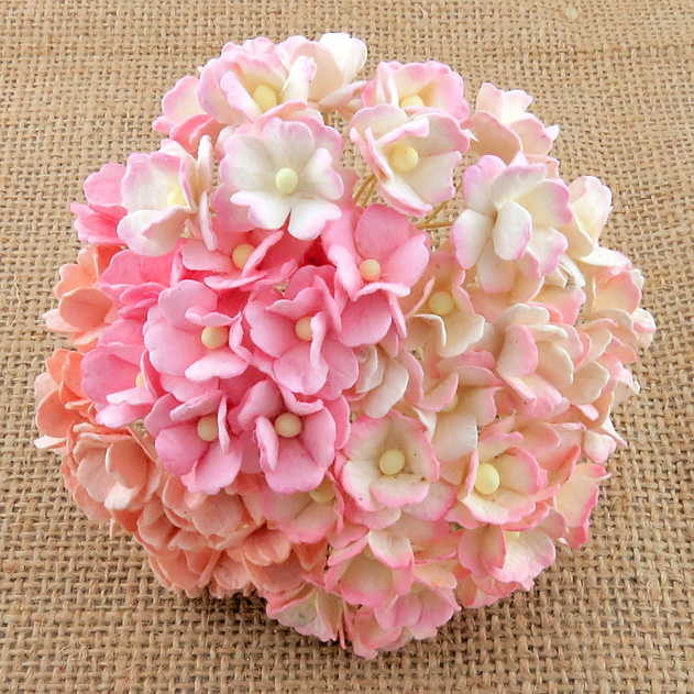 100 MIXED PINK SWEETHEART BLOSSOM