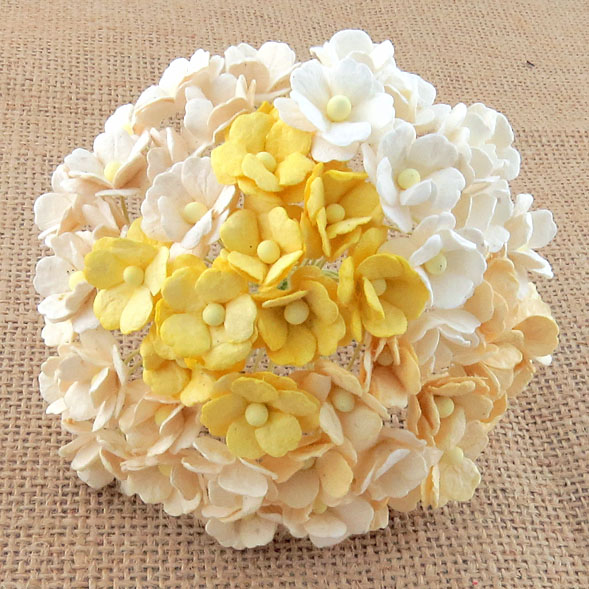 100 MIXED WHITE & CREAM SWEETHEART BLOSSOM