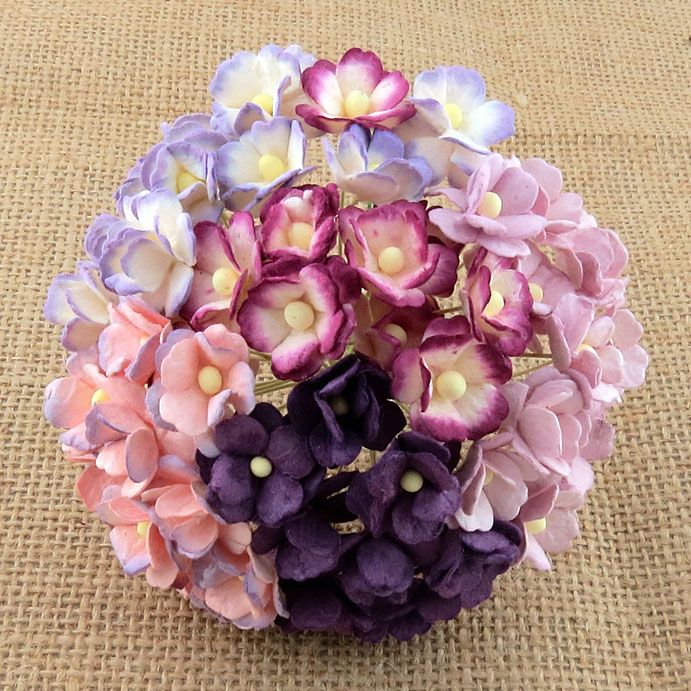 100 MIXED PURPLE/LILAC SWEETHEART BLOSSOM
