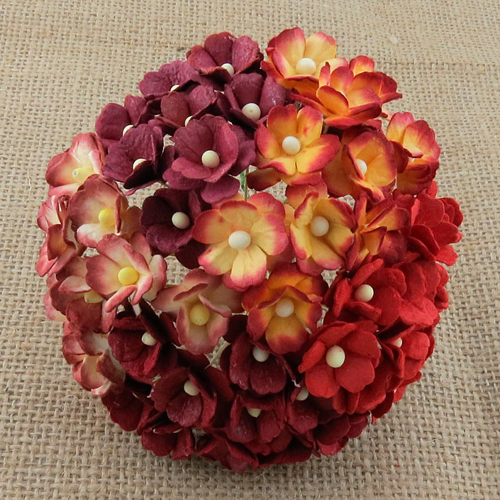 100 MIXED RED SWEETHEART BLOSSOM