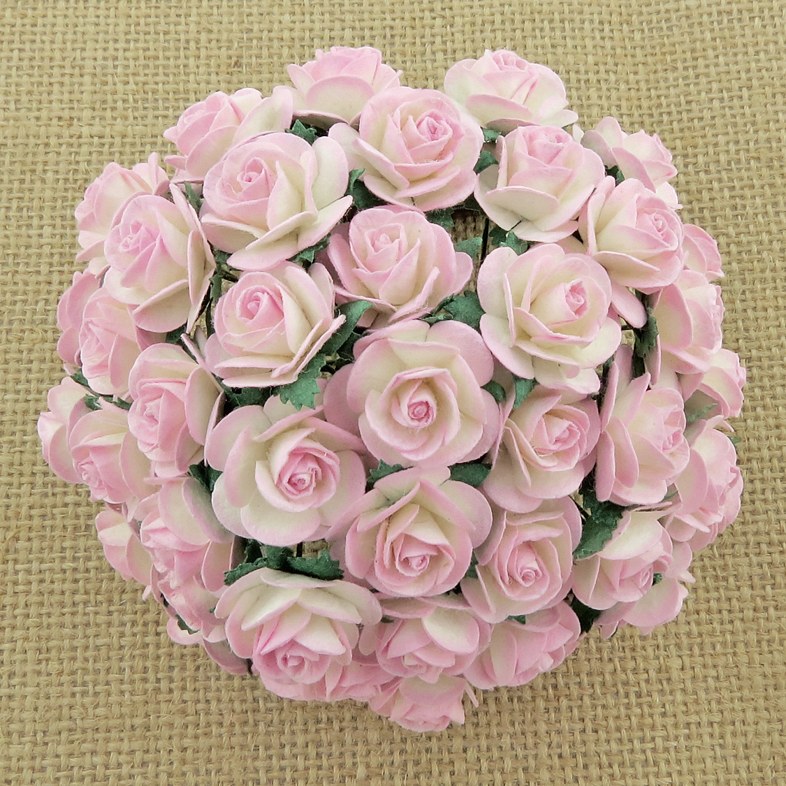 100 2-TONE BABY PINK/IVORY MULBERRY PAPER OPEN ROSES