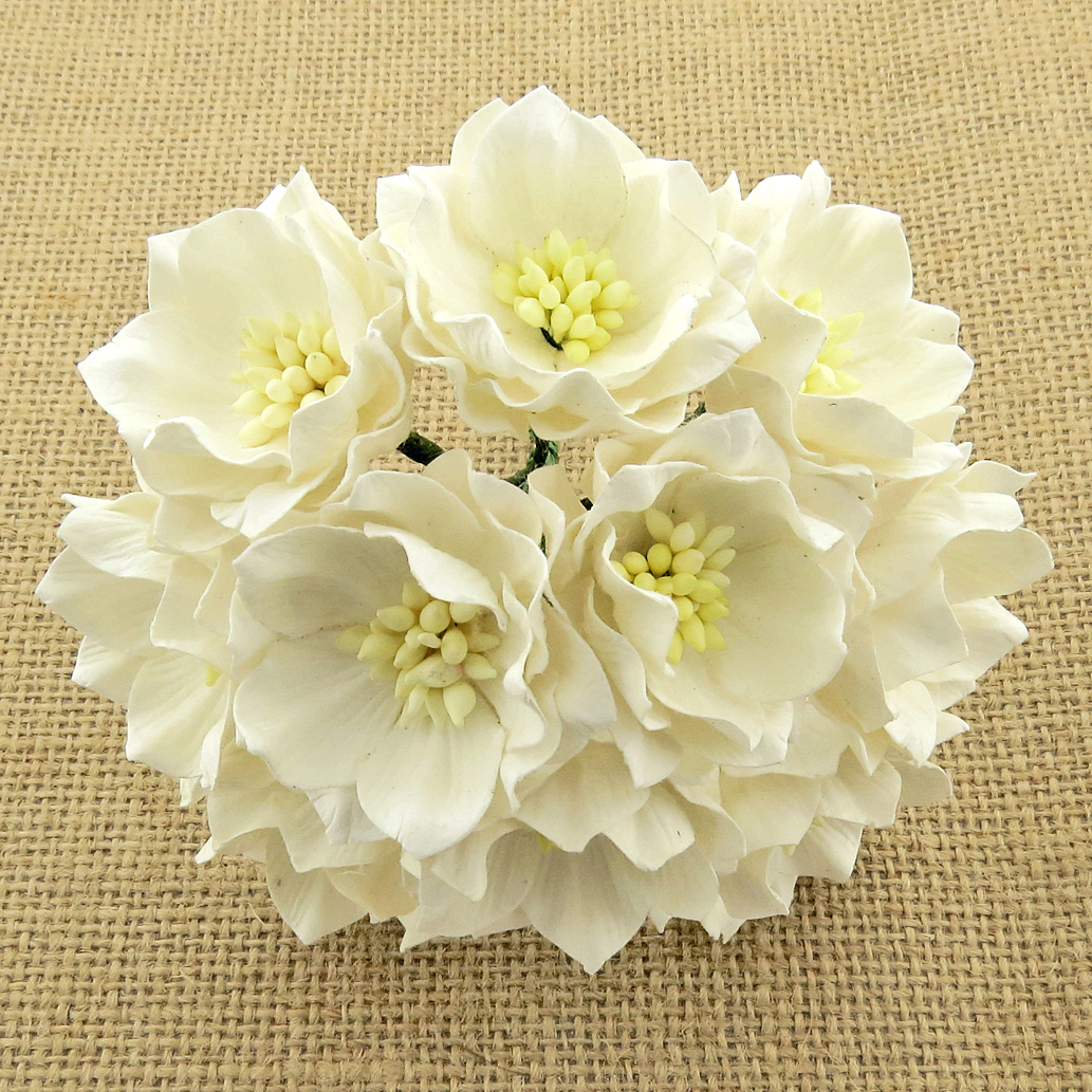 25 WHITE MULBERRY PAPER LOTUS FLOWERS