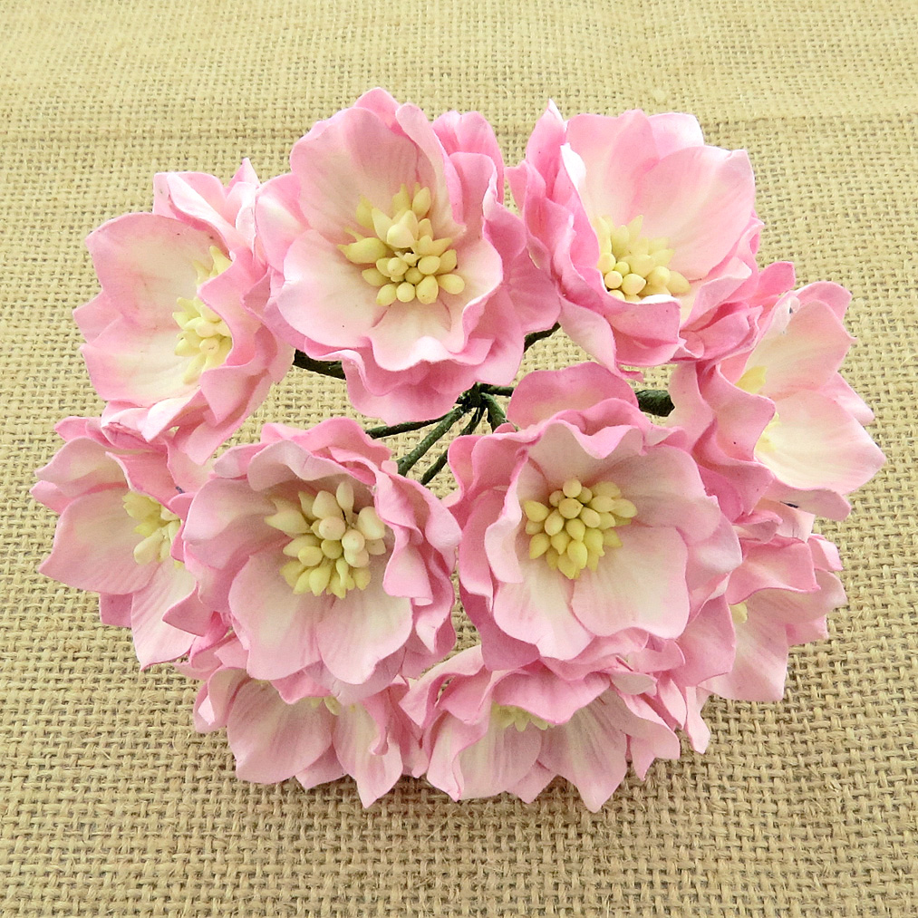 25 2-TONE BABY PINK/IVORY MULBERRY PAPER LOTUS FLOWERS