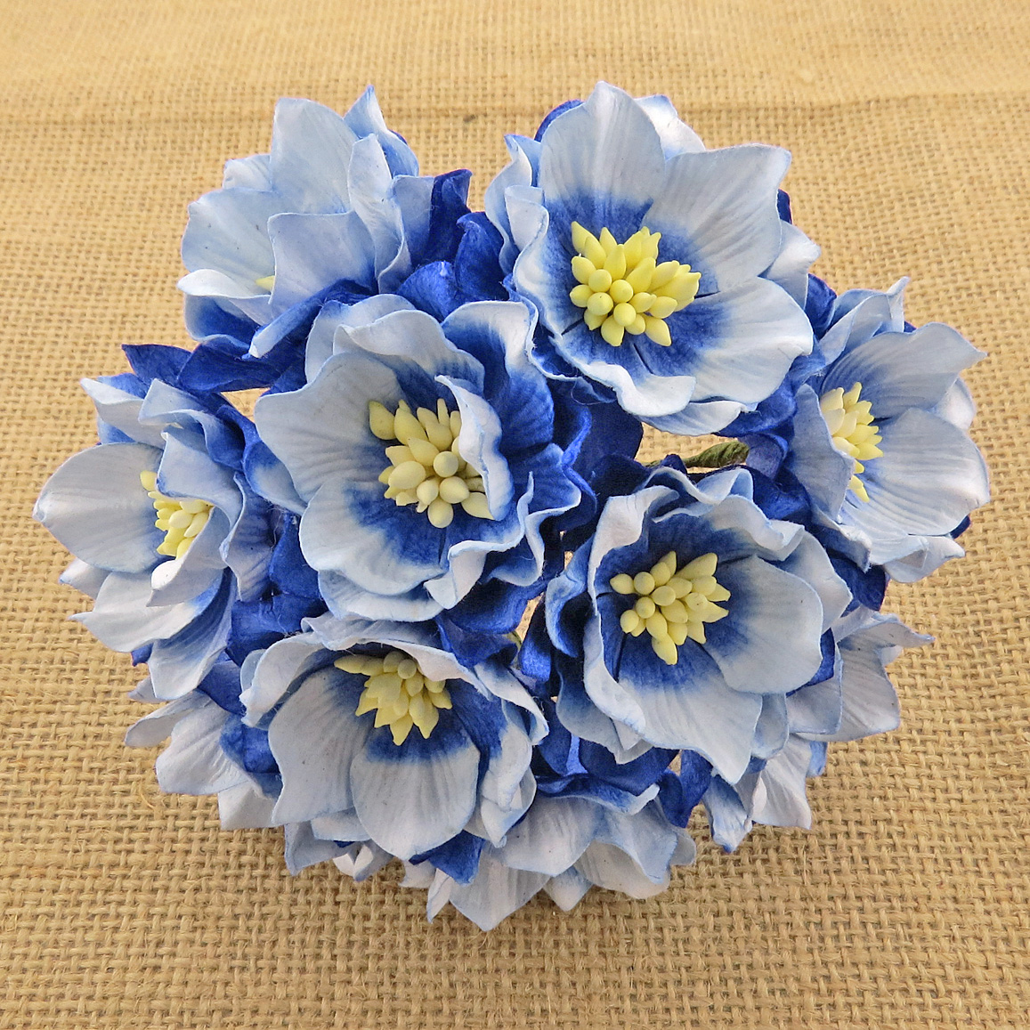 25 2 Tone Sapphire Blue Mulberry Paper Lotus Flowers Saa 107