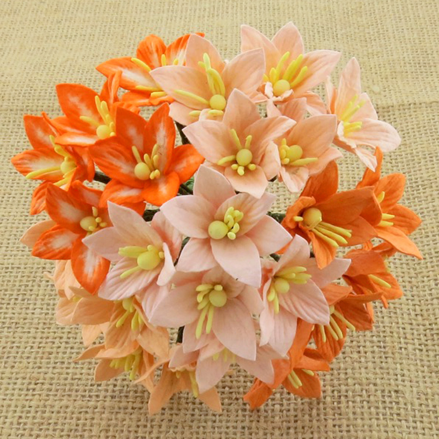 50 MIXED PEACH/ORANGE MULBERRY PAPER LILY FLOWERS - 5 COLOR