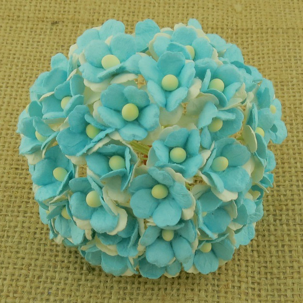 100 2-TONE LIGHT TURQUOISE SWEETHEART BLOSSOM