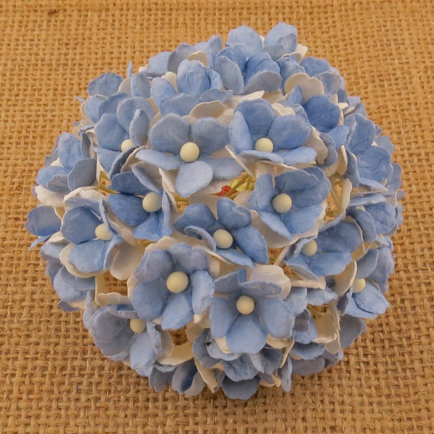 100 2-TONE LIGHT BLUE SWEETHEART BLOSSOM