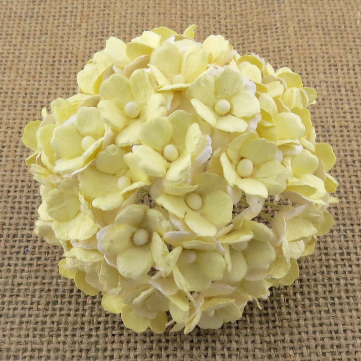 100 2-TONE PALE YELLOW SWEETHEART BLOSSOM