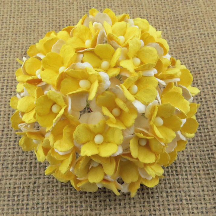 100 2-TONE YELLOW SWEETHEART BLOSSOM