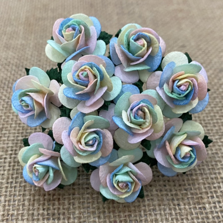 100 PASTEL RAINBOW COLOUR OPEN ROSES