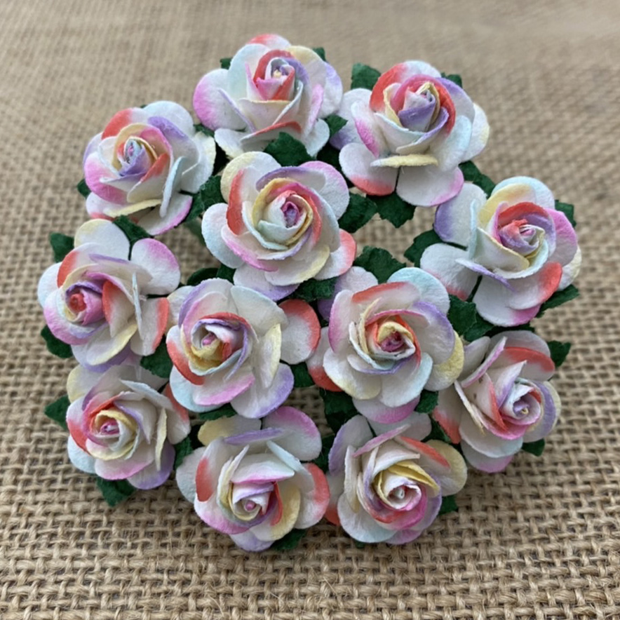 100 2-TONE PASTEL RAINBOW COLOR OPEN ROSES