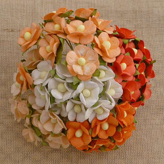 100 MIXED PEACH/ORANGE & WHITE SWEETHEART BLOSSOM