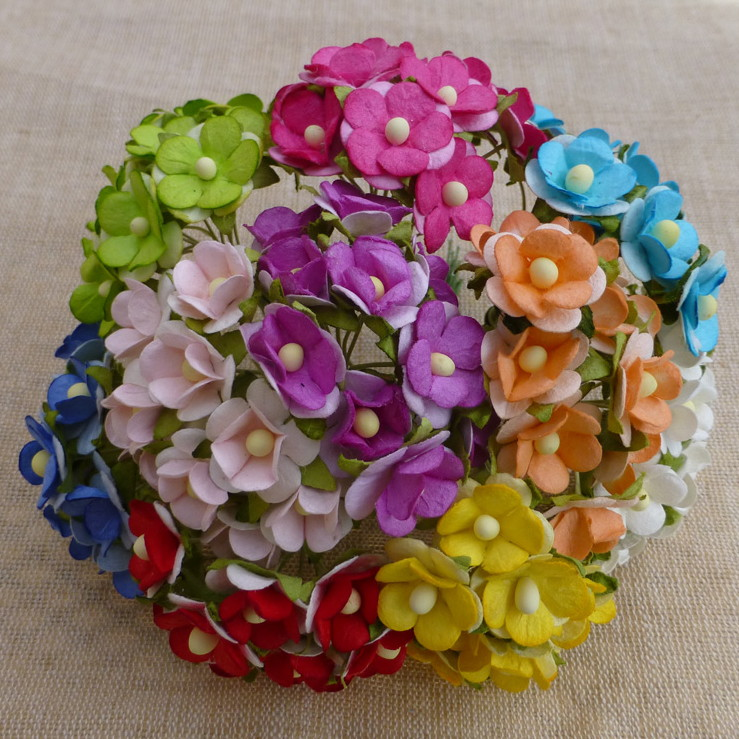 100 MIXED COLOUR SWEETHEART BLOSSOM