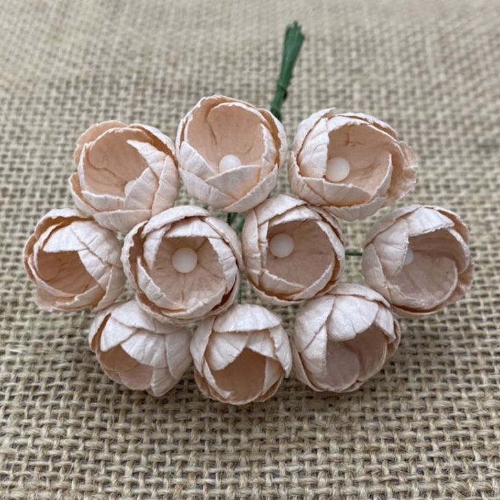 50 PALE PEACH MULBERRY PAPER BUTTERCUPS