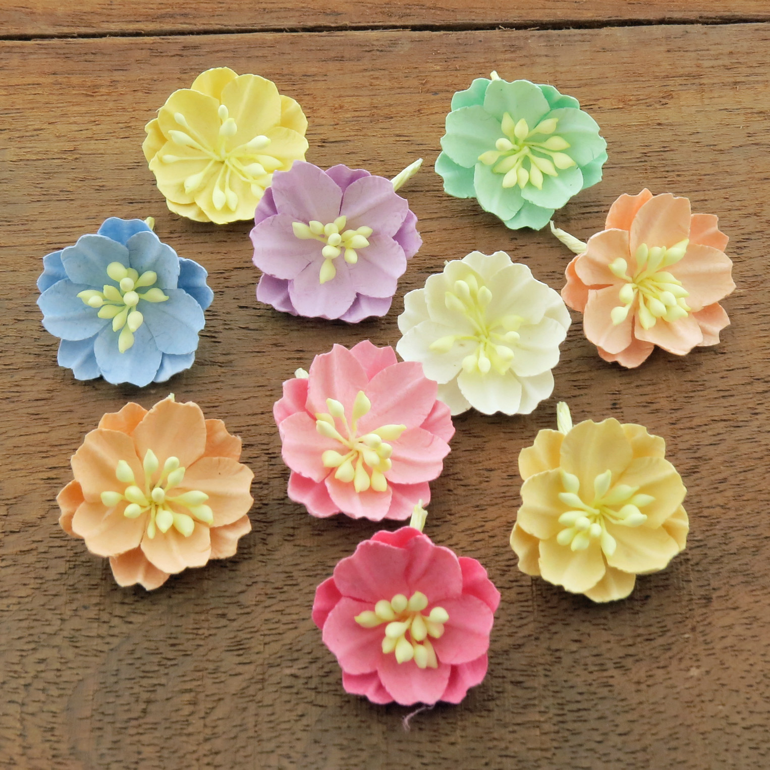 MIXED PASTEL COTTON STEM MULBERRY PAPER FLOWERS - SET A