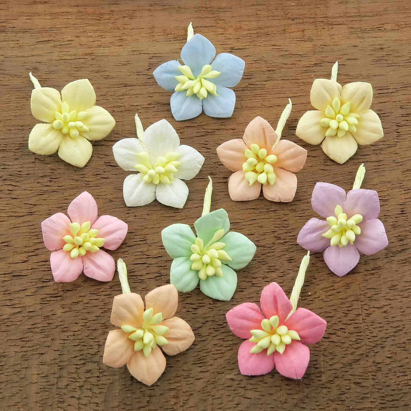 MIXED PASTEL COTTON STEM MULBERRY PAPER FLOWERS - SET C