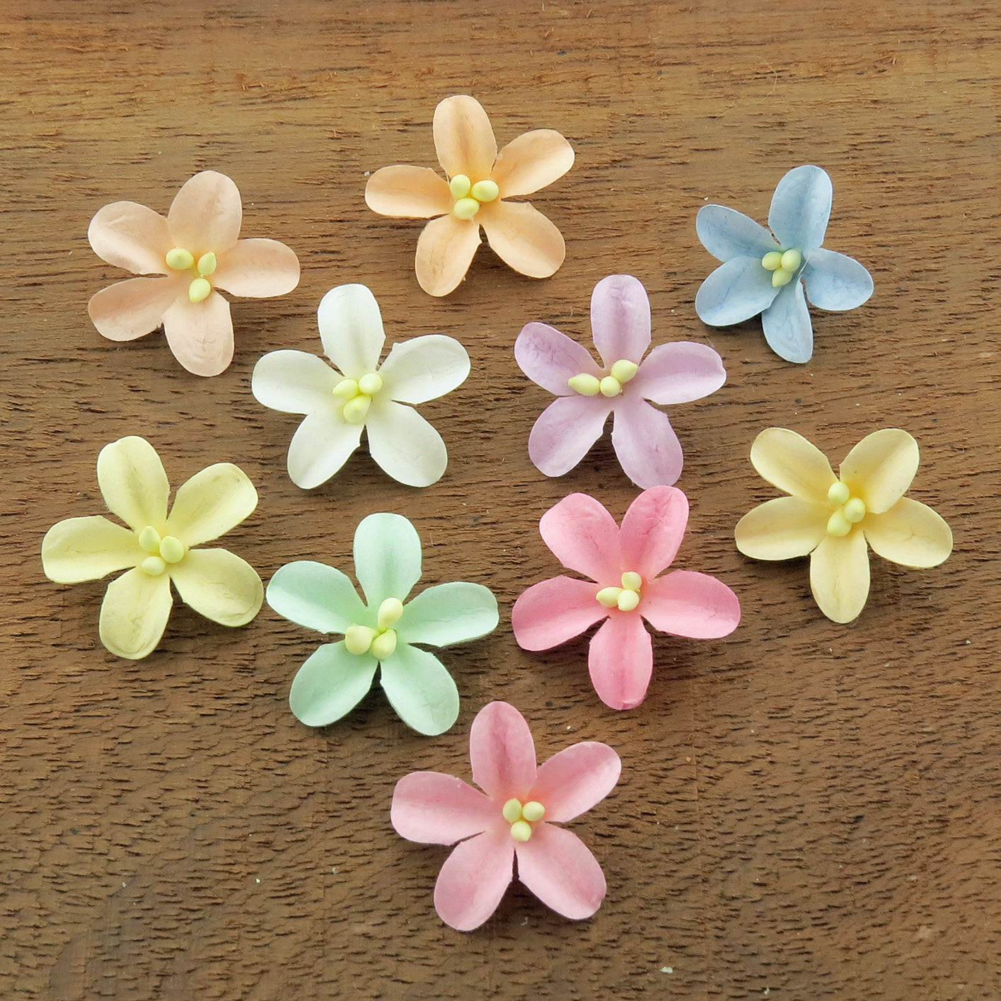 MIXED PASTEL COTTON STEM MULBERRY PAPER FLOWERS - SET D