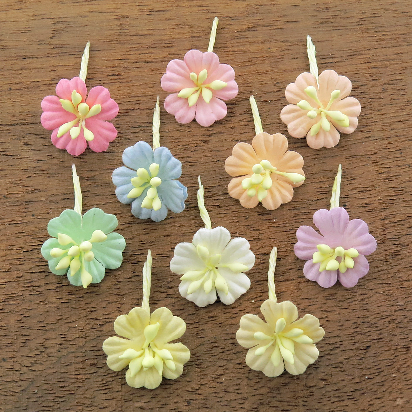 MIXED PASTEL COTTON STEM MULBERRY PAPER FLOWERS - SET F
