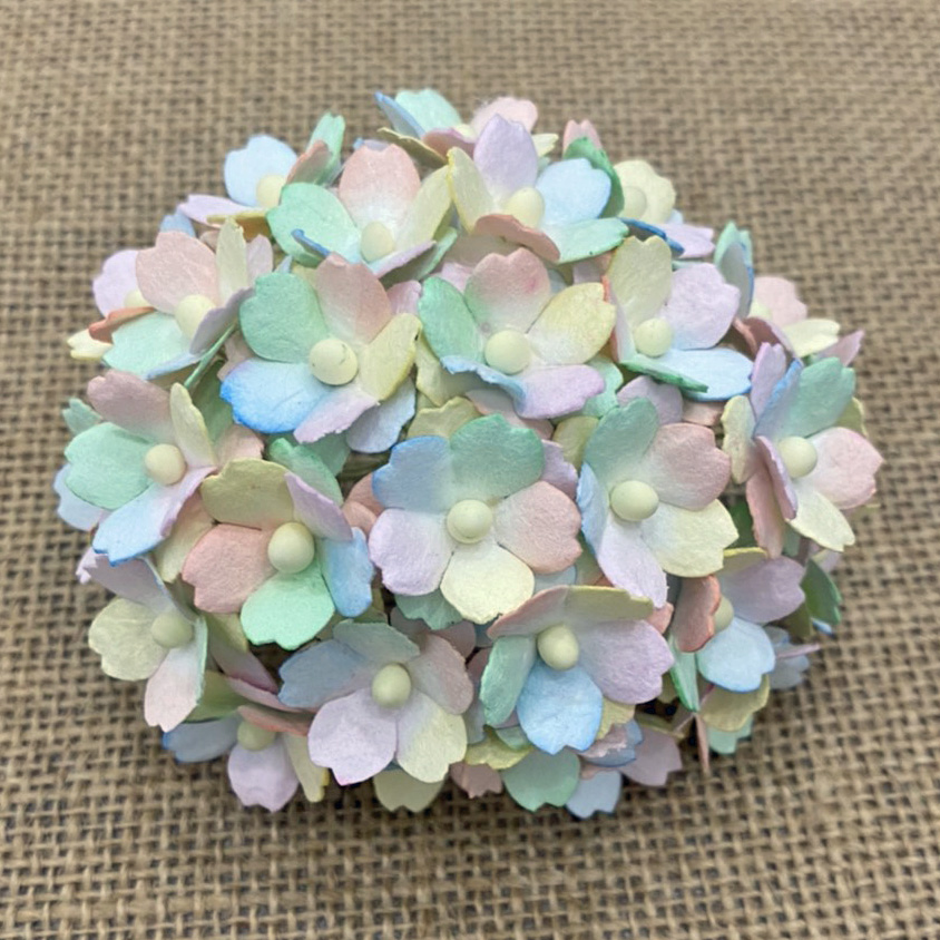 100 MIXED RAINBOW PASTEL SWEETHEART BLOSSOM