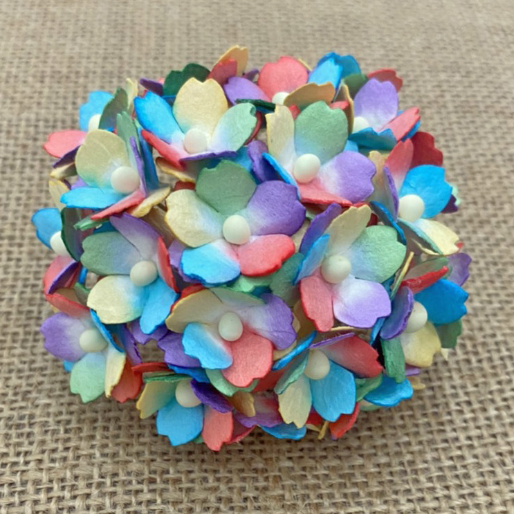 100 MIXED RAINBOW SWEETHEART BLOSSOM