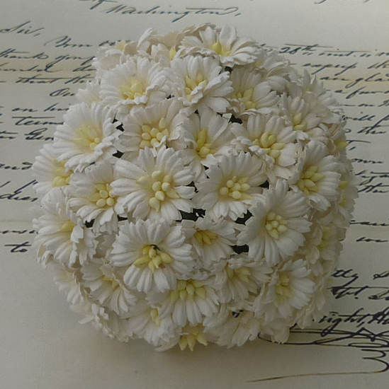 50 WHITE COSMOS DAISY STEM FLOWERS