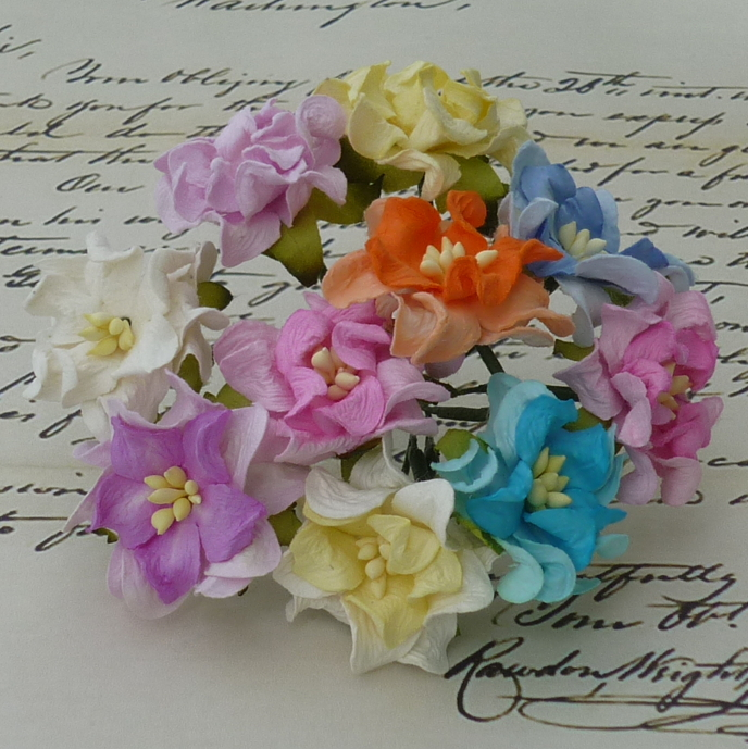 50 MIXED COLOUR SMALL GARDENIA FLOWERS