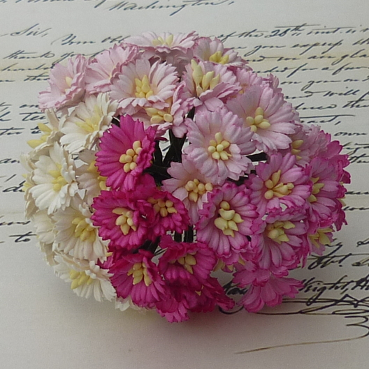 50 MIXED PINK/WHITE COSMOS DAISY STEM FLOWERS