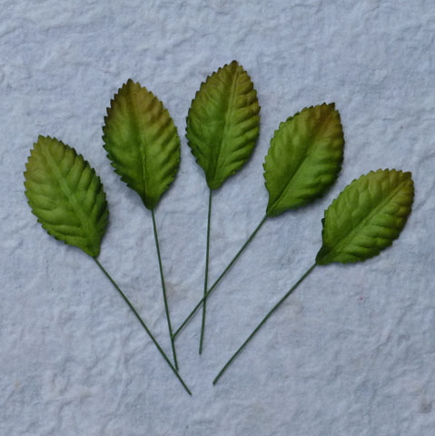100 Green Mulberry Paper Leaves - 35mm