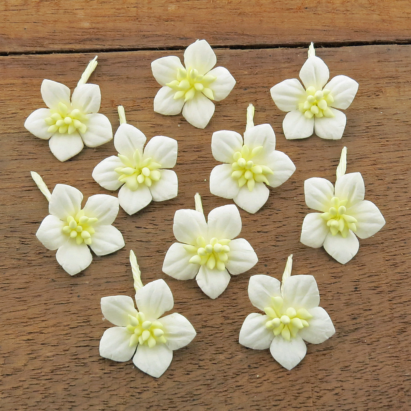 WHITE COTTON STEM MULBERRY PAPER FLOWERS - SET C
