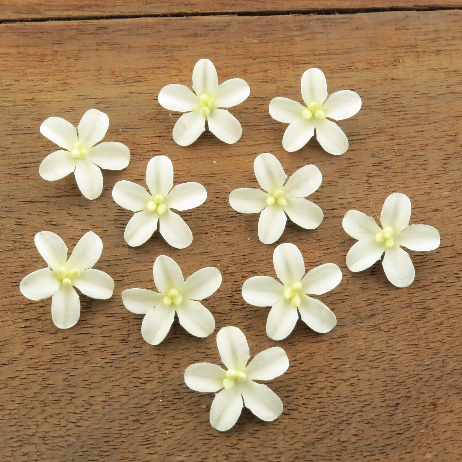 WHITE COTTON STEM MULBERRY PAPER FLOWERS - SET D