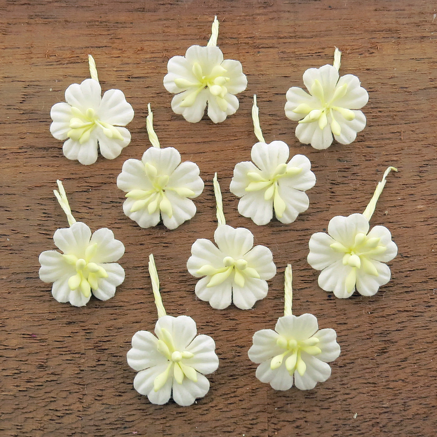 WHITE COTTON STEM MULBERRY PAPER FLOWERS - SET F